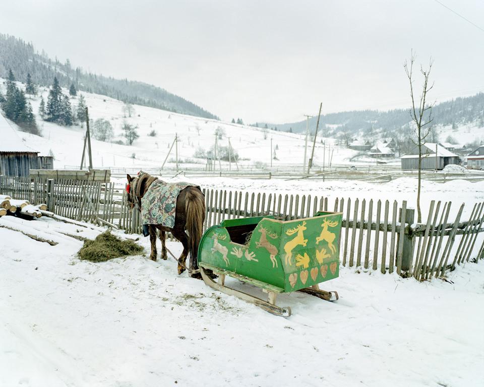 Ein Pferd und ein Schlitten und Schnee.