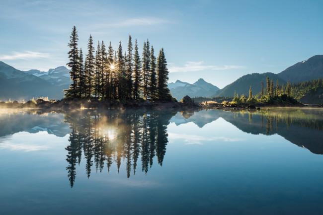 Kleine Baumgruppe spiegelt sich auf einem See.