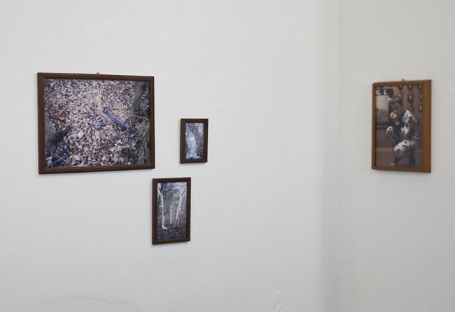 Bilder an einer Wand.