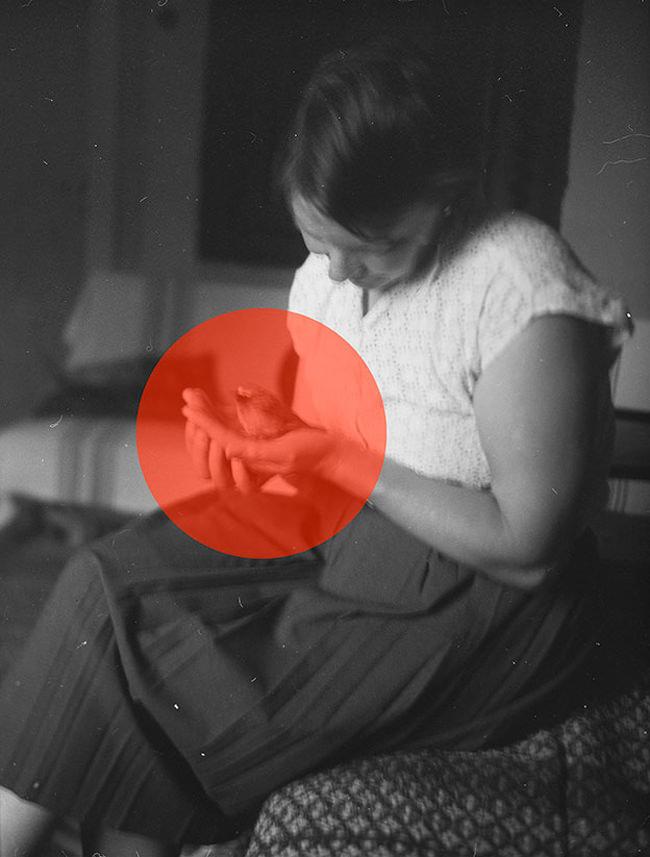 Eine Frau hält einen Vogel in der Hand.