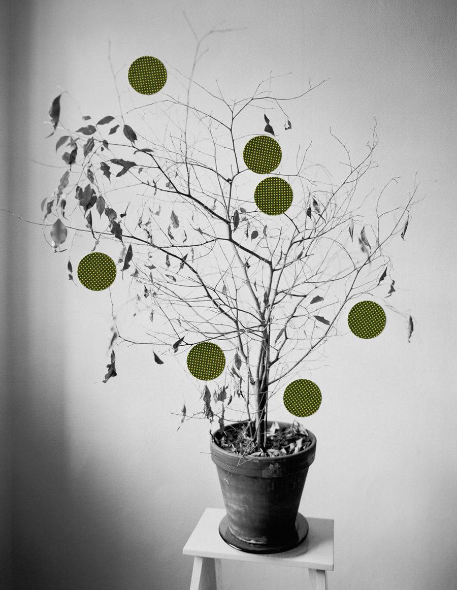 Baum mit Klebepunkten