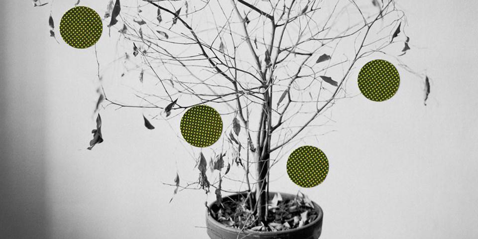 Die Kunst von Niina Vatanen