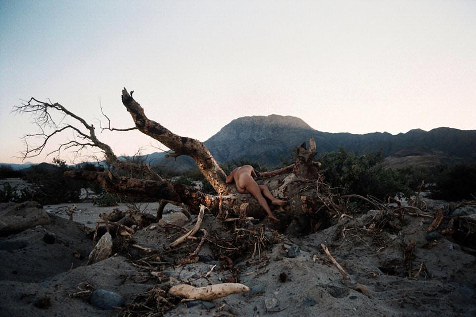 Eine Frau über einen toten Baum gebeugt.