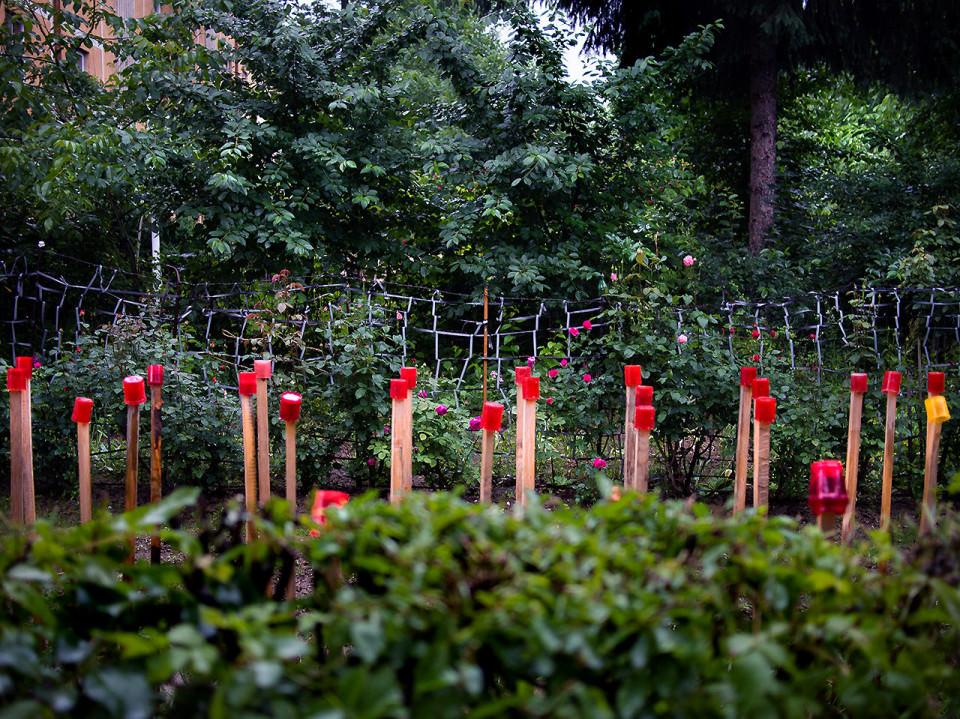 Ein angelegter Garten