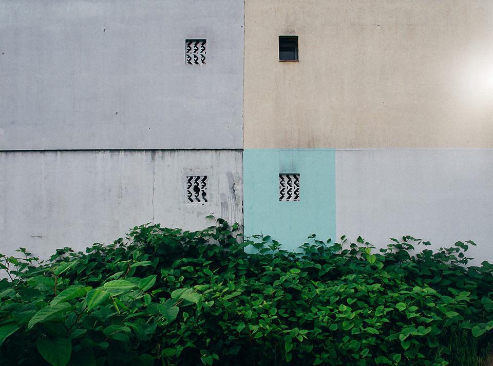Fenster hinter einem Busch