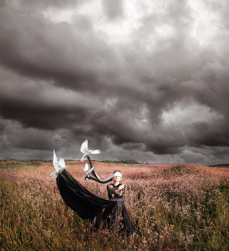 Person in einem Feld mit weißen Vögeln