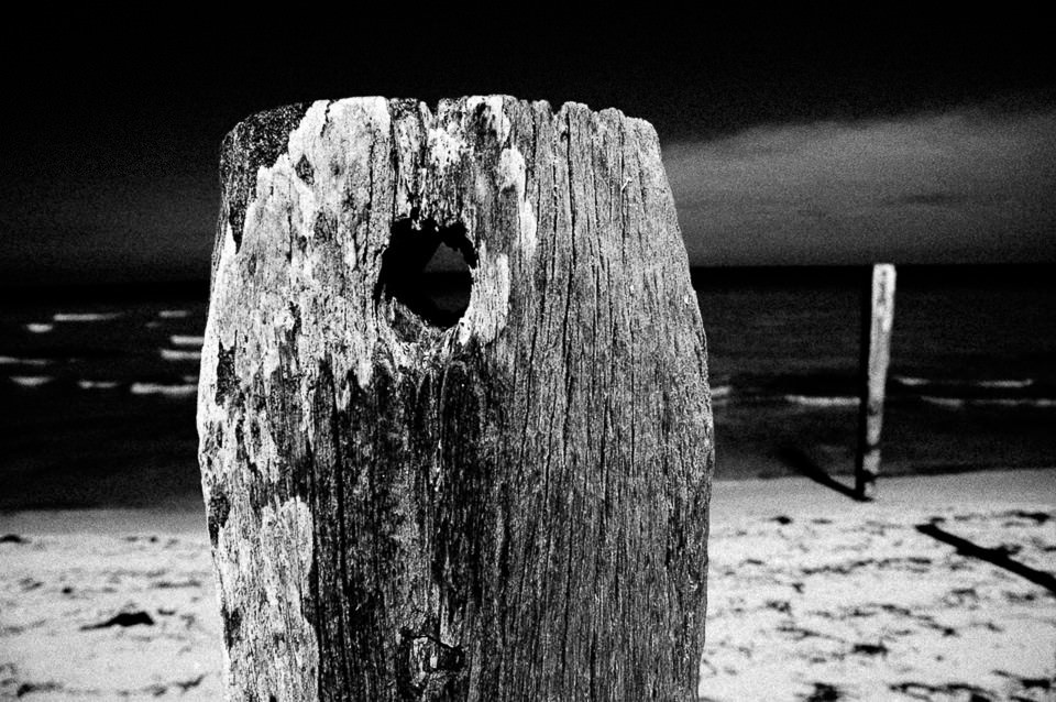 Ein Baumstamm mit einem Loch am Strand.