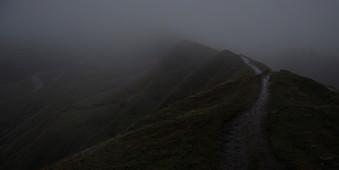 Ein düsteres Landschaftsofoto mit viel Nebel