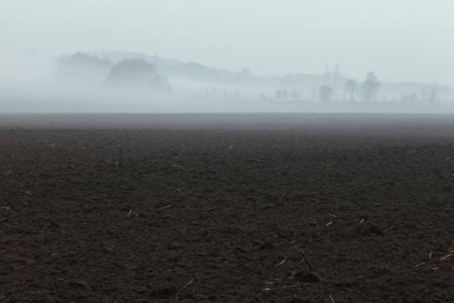 Ein nebeliger Acker am frühen Morgen.