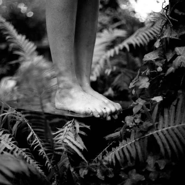 Füße und Farn.
