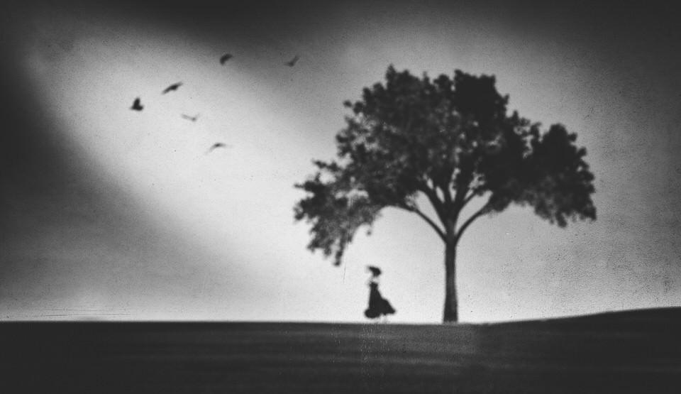 Ein Baum, eine Frau und Vögel als Schemen.