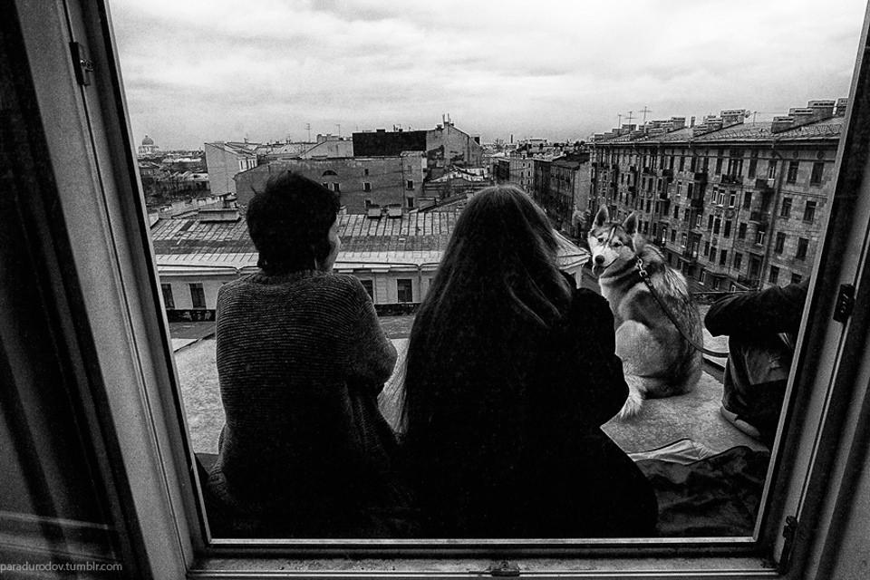 Zwei Personen und ein Husky sitzen außerhalb des Fensters über der Stadt.