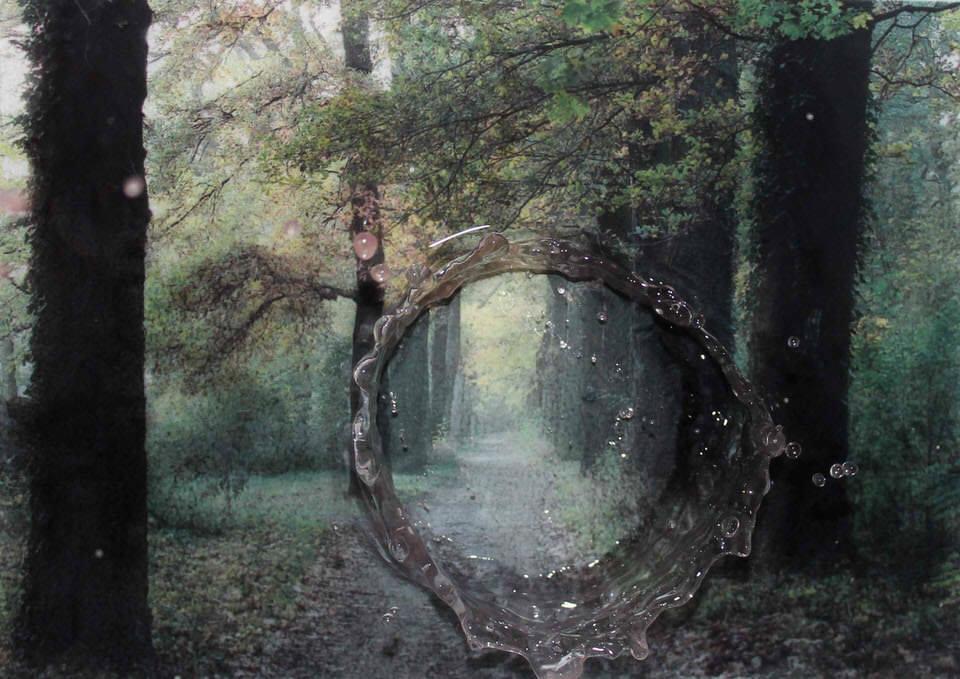 Surreales Bild mit Wald und Tropfen