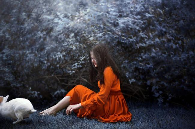 Eine Frau sitzt auf einer blauen Wiese. Ein weißer Hase springt an ihr vorbei.