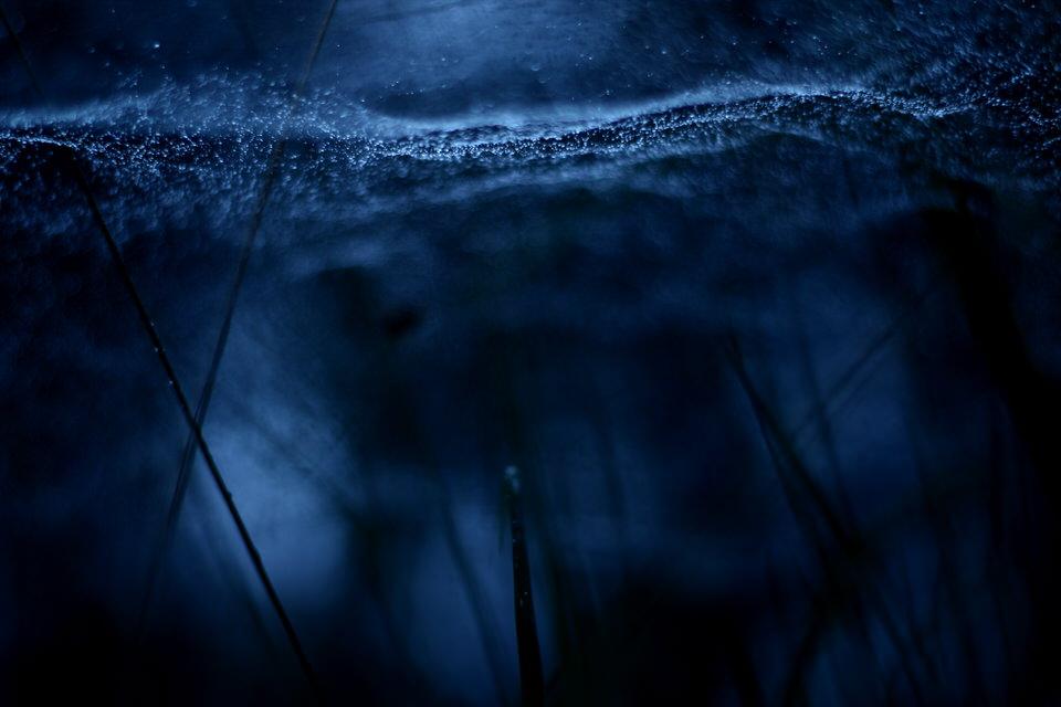 Blick auf eine sehr schmale Schärfeebene, eingetaucht in tiefes Blau.