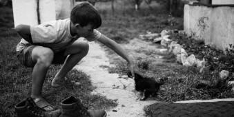 Ein junge streichelt ein kleines Hündchen