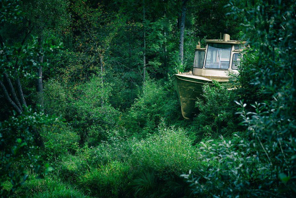 Ein Boot in der grünen Natur.