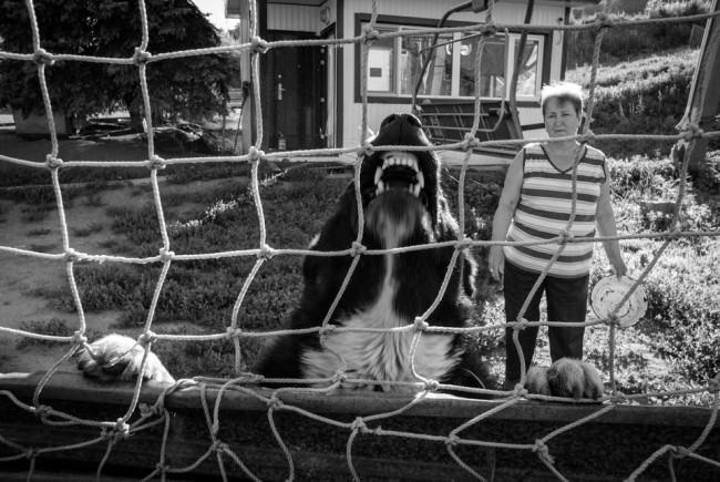 Im Vordergrund ein bellender Hund, im Hintergrund eine Frau, die in die Kamera schaut.