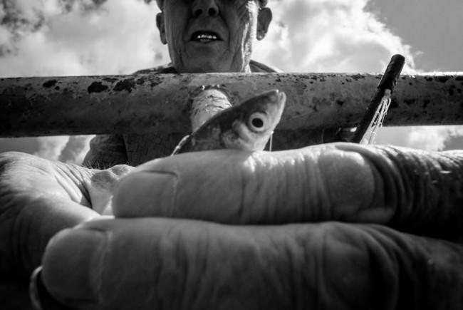 Ein Mann hälft einen Fisch in die Kamera.