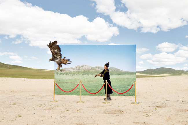 Ein Mann lässt einen Adler fliegen.