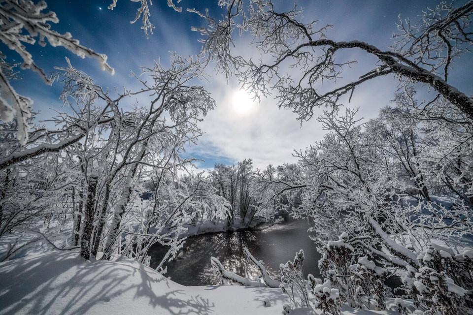 Verschneiter Wald mit Teich