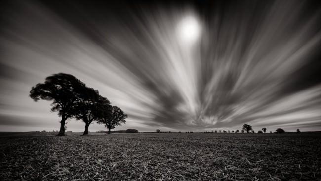 Langzeitbelichtung dreier Bäume auf einem leeren Feld vor von Wolken durchzogenem Himmel.