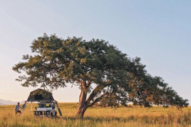 Ein Auto mit Zeit auf dem Dach unter einem Baum