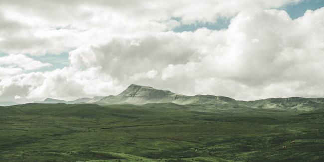 Eine grüne Landschaft