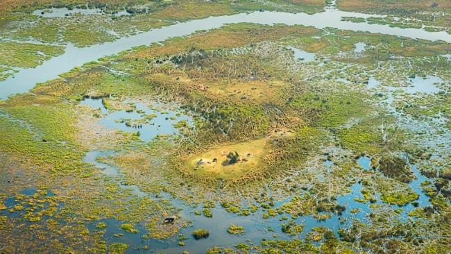 Luftaufnahme einer Deltalandschaft mit viel Wasser und Vegetation.