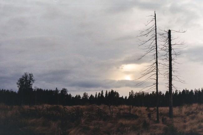 Eine Landschaft in der Dämmerung