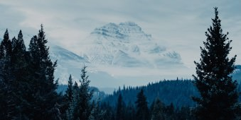 Schneebedecktes Gebirge vor Nadelwald.