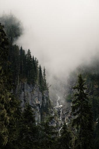 Nebel steht vor einer Gebirgswand, die mit Nadelwald bewachsen ist und an der ein Fluss herabfließt.