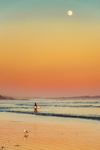 Ein Surfer und eine Möwe an einem Strand, der in oranges Licht getaucht ist.