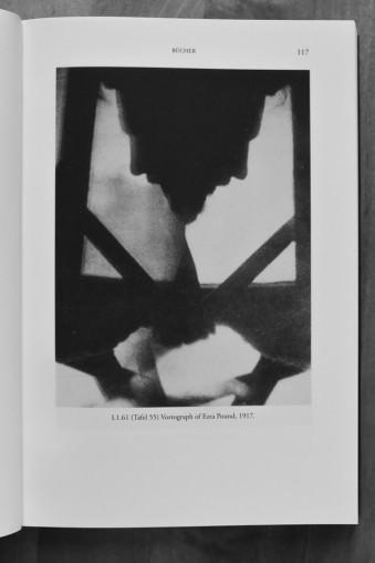 Abstrakte Fotografie mit einem menschlichen Profil