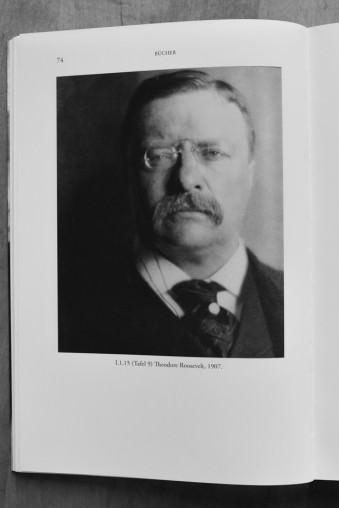 Portrait von Theodore Roosevelt