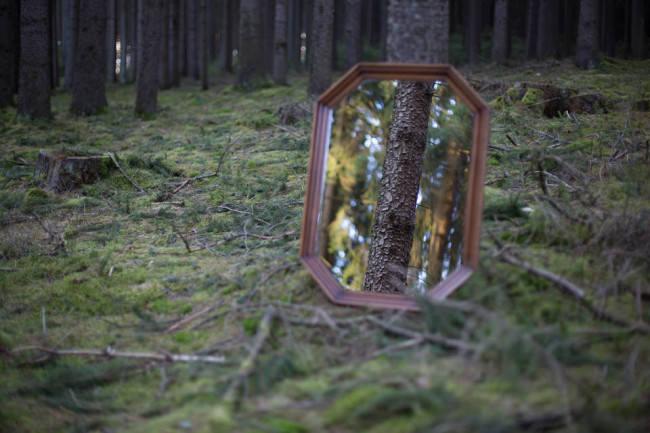 Steht ein Spiegel im Wald...