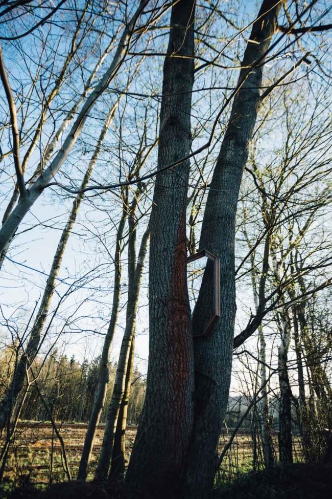 Ein Spiegel hängt zwischen zwei Bäumen und trägt den Himmel in sich.