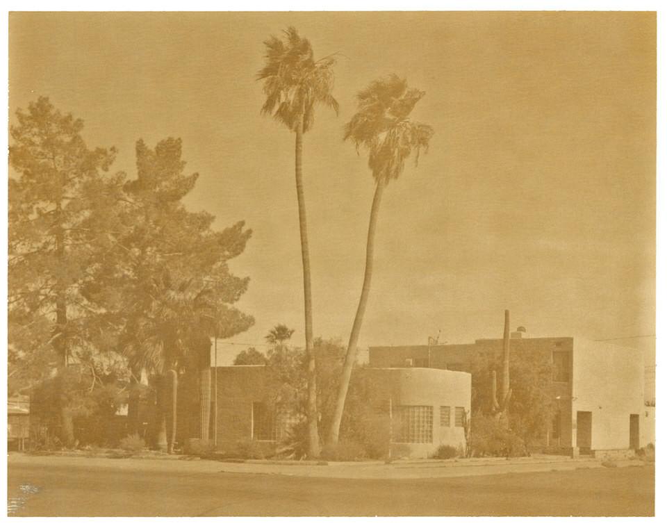 Palmen vor einem Haus