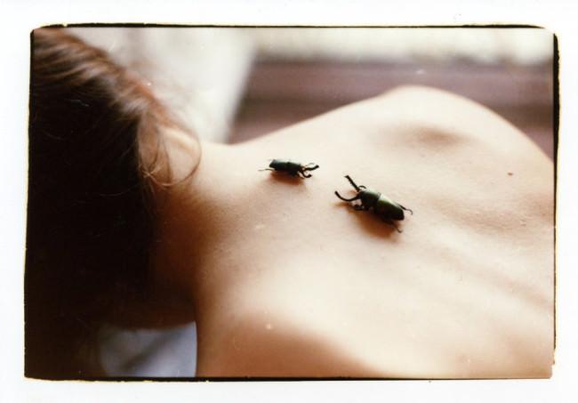 Tote Käfer auf dem Rücken einer Person