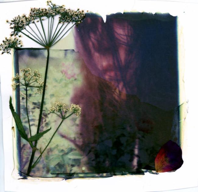 Portrait mit Pflanze