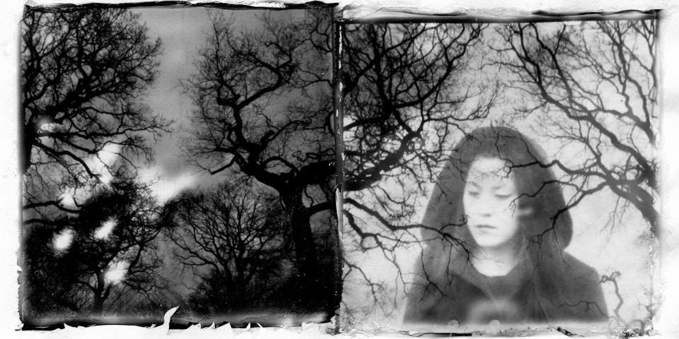Schwarzweiss Doppelbelichtung von Bäumen und einem Portrait