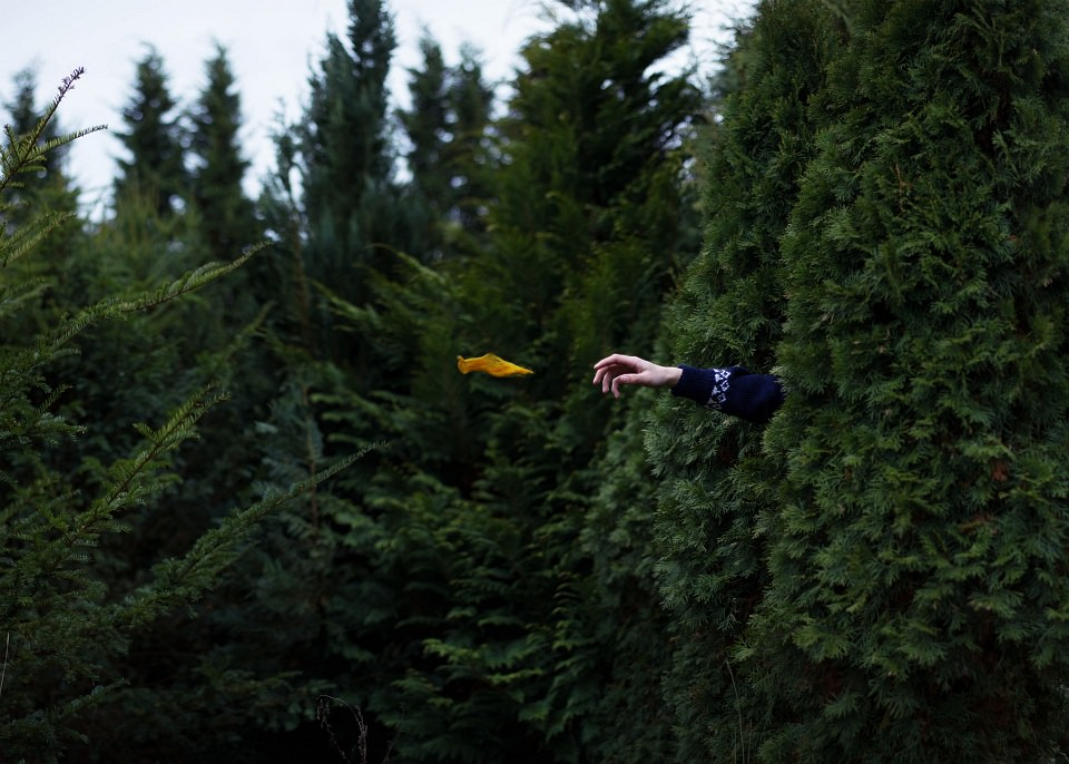 Ein Arm ragt aus einer grünen Hecke und greift nach einem schwebenden gelben Etwas.