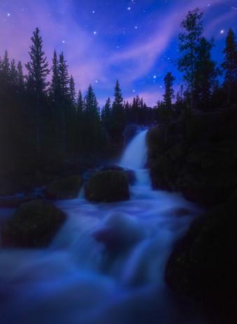 Ein Fluss schlängelt sich zwischen Nadelbäumen hindurch.