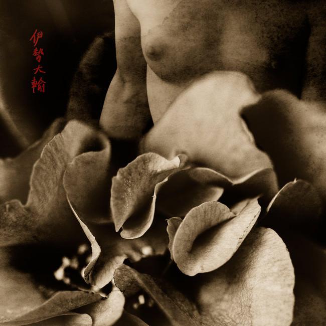 Weiblicher Akt mit Blüten.