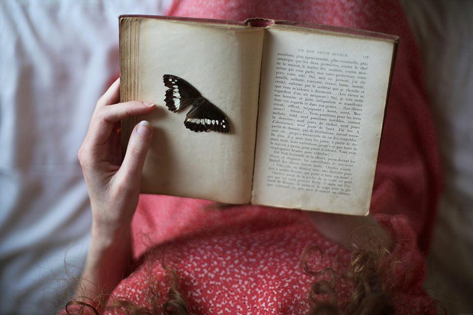 Ein Buch mit Schmetterling