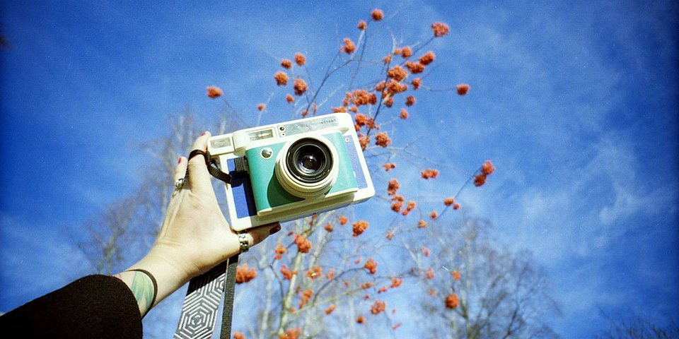Bunte Kamera wird von einem Arm hochgehalten, dahinter ein Busch mit orangen Früchten und blauer Himmel.