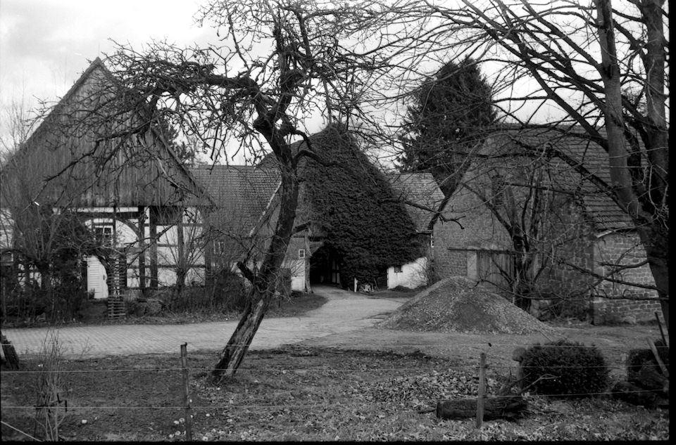 Ein paar Häuser und Bäume