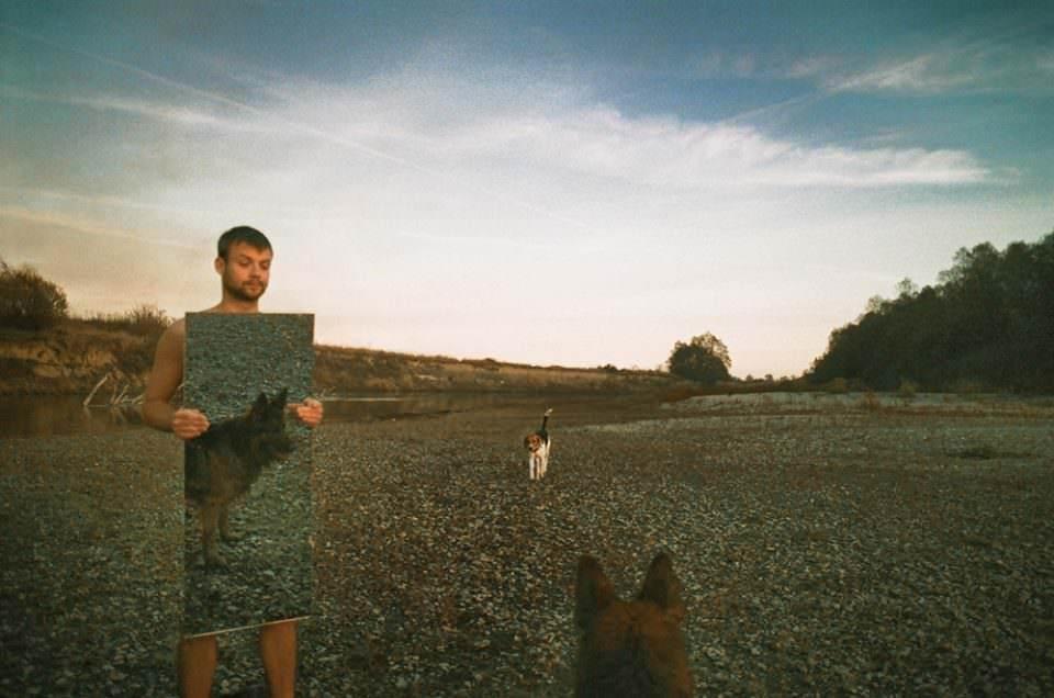 Ein Hund sieht sich im Spiel und ein Mann schaut ihm dabei zu.