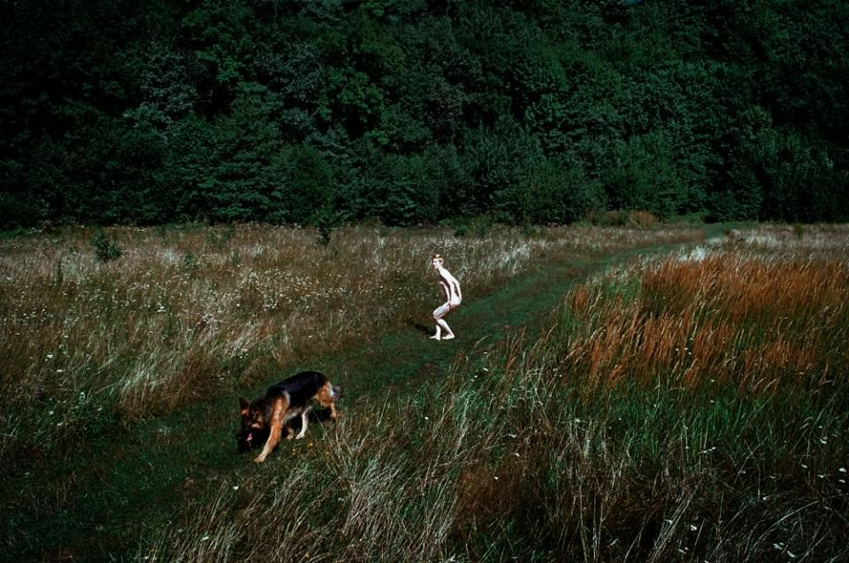 nackte Frau und ein Hund gehen spazieren