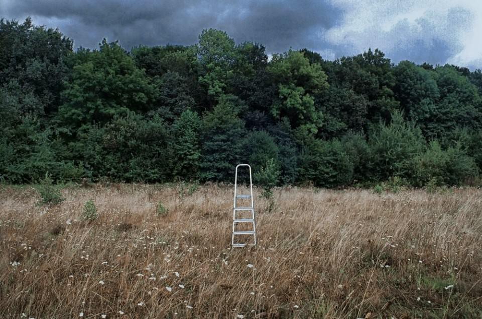 Eine Leiter im Feld